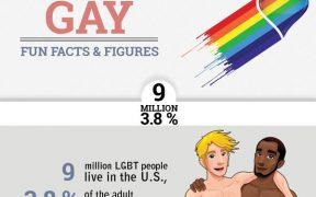 gay stats