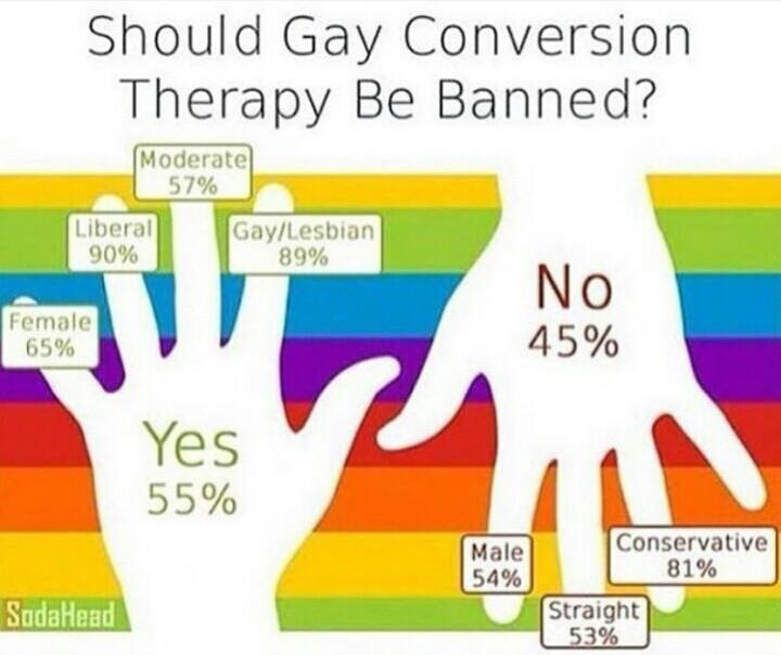 Infographics - a survey of people on the prohibition of conversion therapy